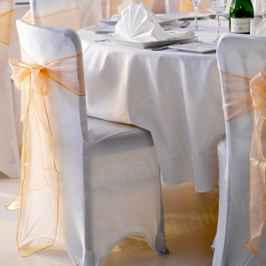Banqueting Chair with Covers